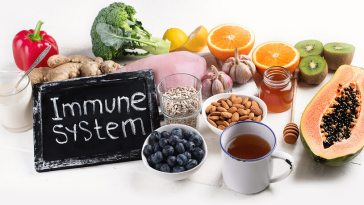 Immune system booster foods