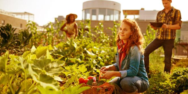 Energy Foods_Increase Your Energy
