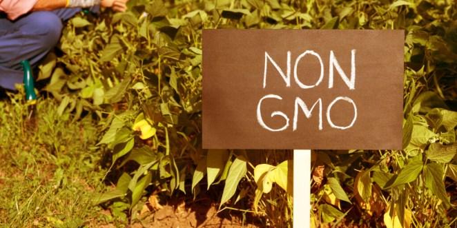 Non GMO vs. Organic_GMO Mean