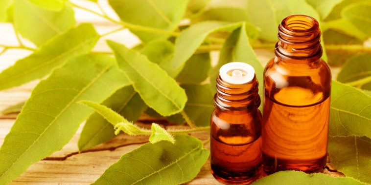 Top 7 Eucalyptus Oil Benefits and Uses_Title