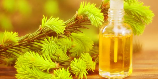 How to Reap Instant Tea Tree Oil Benefits_Benefits for Skin
