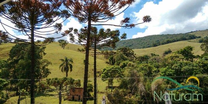 Vista da estrada para Monte Verde MG - Clima serrano foto