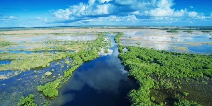 Pontos turísticos da Flórida - Everglades foto