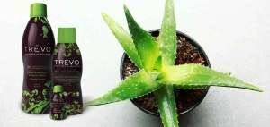 trevo dietary supplement