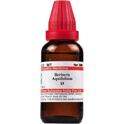 Berberis Aquifolium Q Natura Right