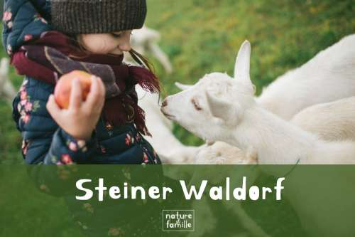 Pédagogie Steiner-Waldorf : les principes éducatifs