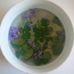 Infusion de violette