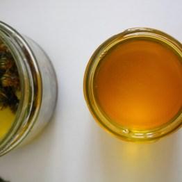 Macérat huileux de pissenlit