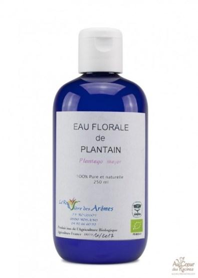 eau-florale-hydrolat-de-plantain