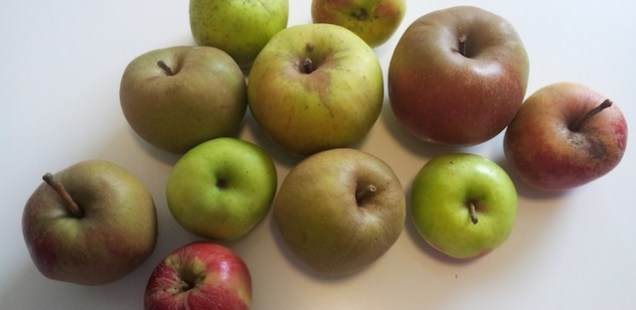 Sortes de pommes