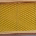 Feuille de cire d'abeille incrustée dans le fil en inox