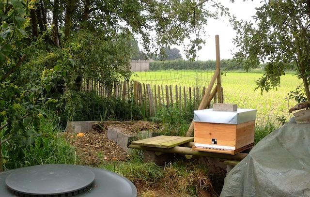 La ruche installée au jardin