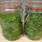 Lactofermentationpour conserver les légumes autrement