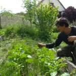 Mode de vie : simplicité, autonomie, permaculture...