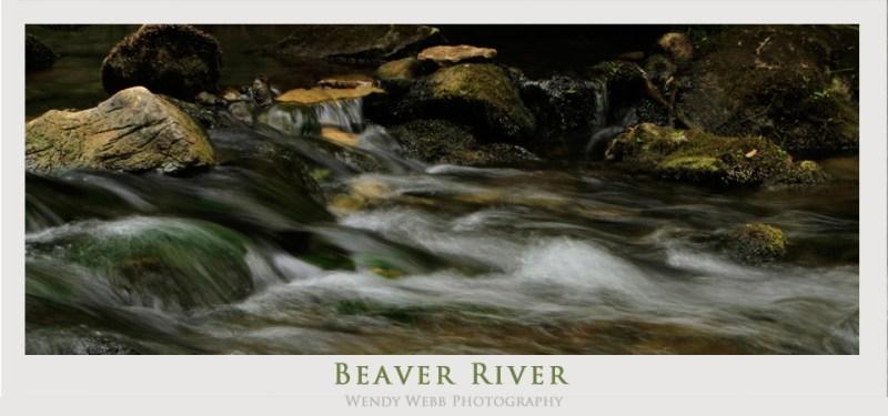 beaver river rocks