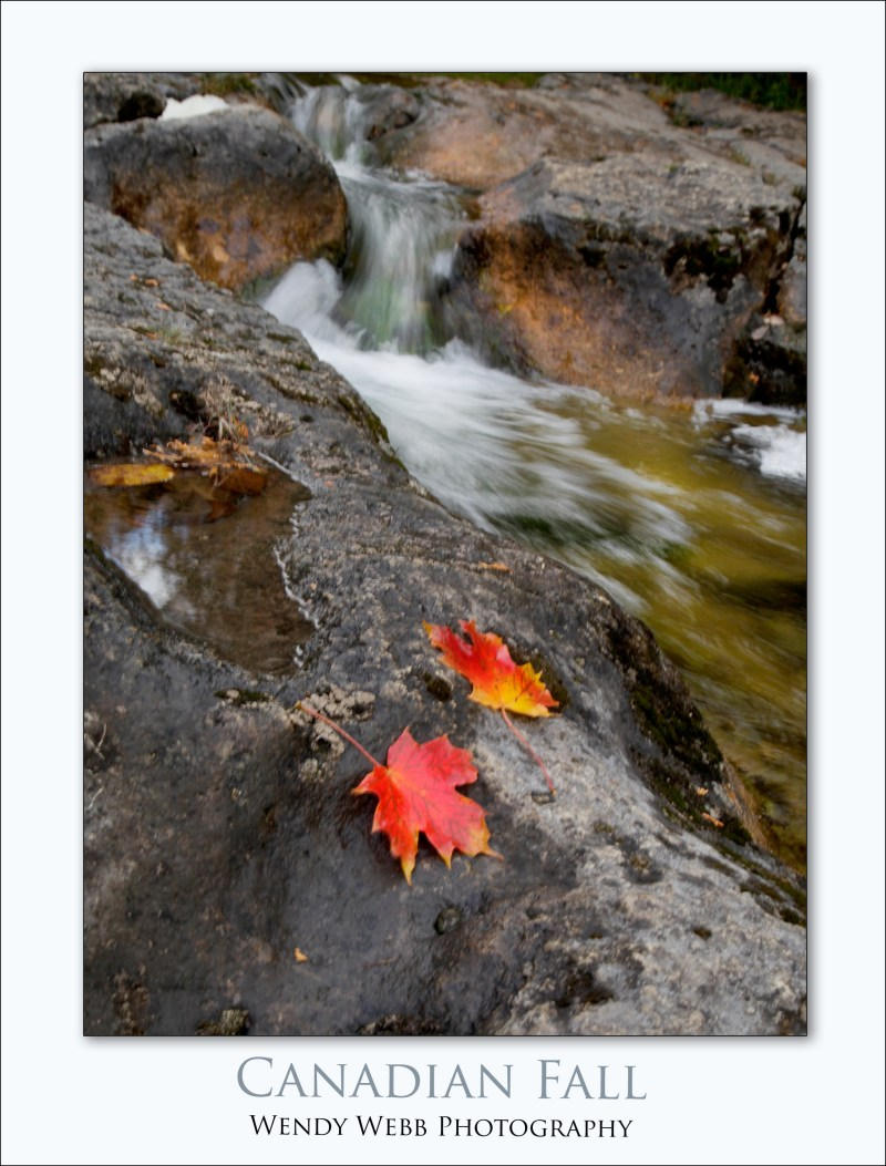 canadian-fall