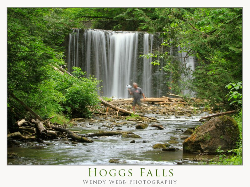 hoggs falls in summer