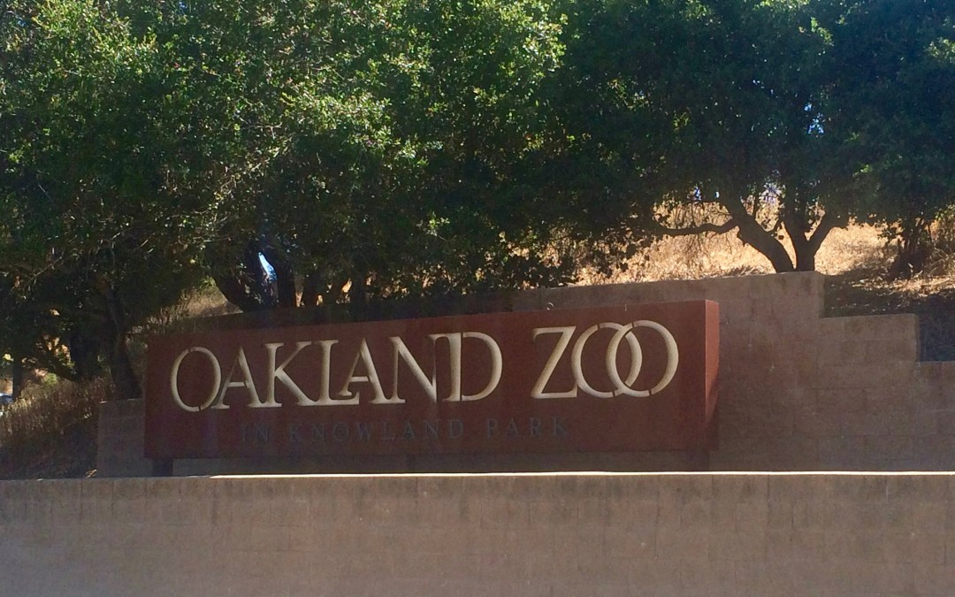 A Family Guide to the Oakland Zoo (Oakland, California)