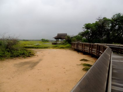 Kealia Pond-National Wildlife Refuge