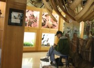 Nature Artists' Guild at Jurica-Suchy 2013 3