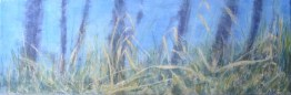 Along the Creek, copyright Marlene Vitek