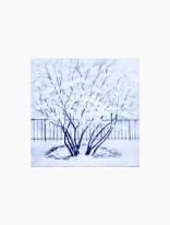 snowy-bush-copyright-marlene-vitek