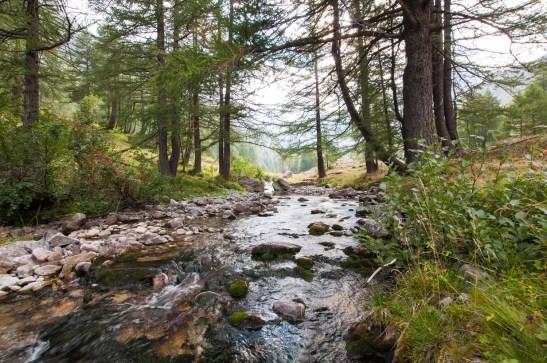 Lac de l'Agnel - Ruisseau de Valmasque