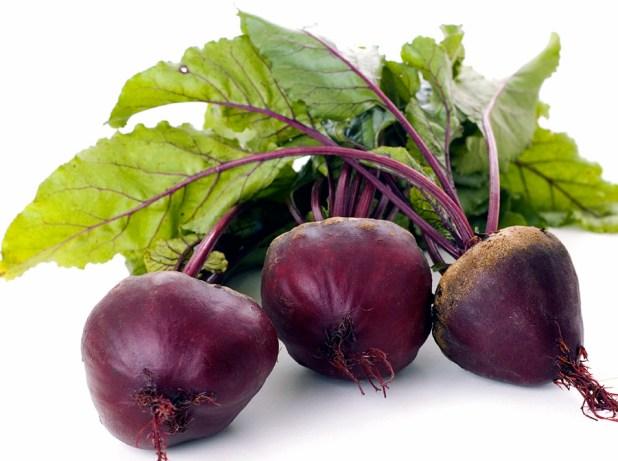 beet-plant1