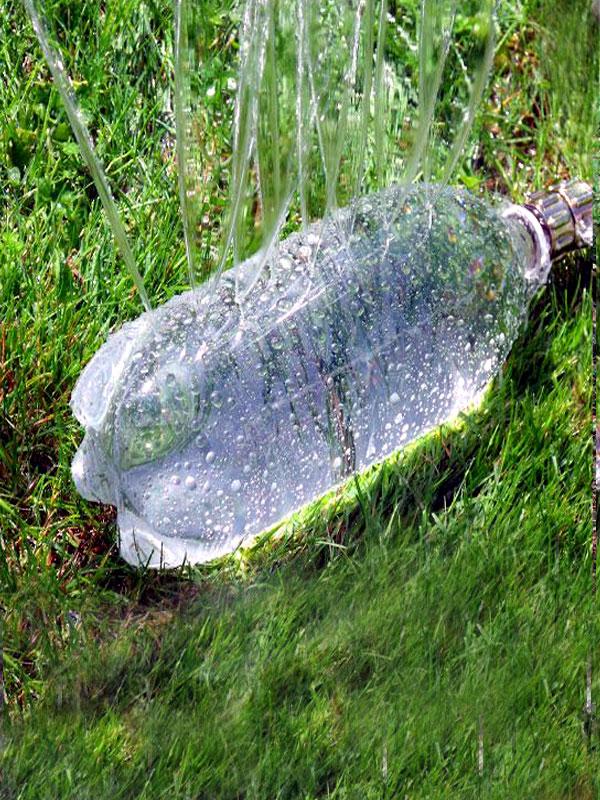 Plastic Bottles Beautiful Vegetable Garden Ideas Using Plastic Bottles