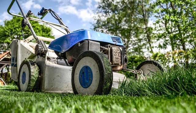Free Florida-friendly Lawn workshops in Lecanto – March 2017