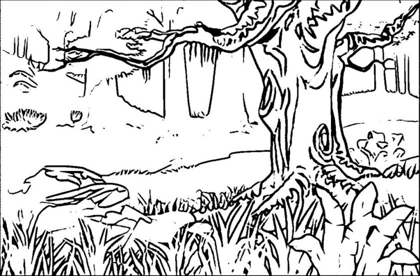 printable small forest coloring page for both aldults and