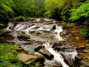 To revisit this article, visit my profile, thenview saved s. Chattahoochee National Forest