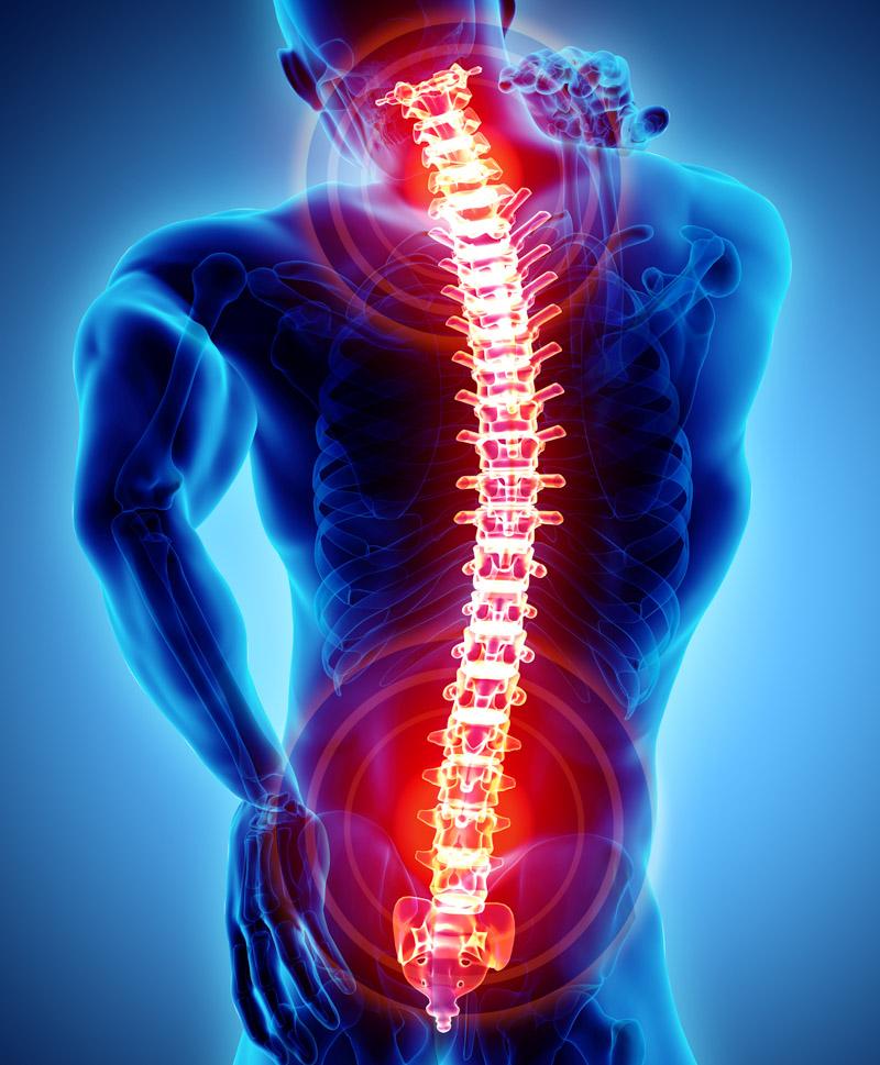 human spine highlighting pain spots