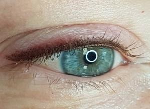 Hajutusega püsimeik silmadele 1024x742 1