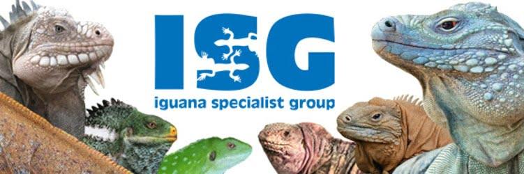 IUCN SCC Iguana Specialist Group Position Statement on Non-native Iguanas