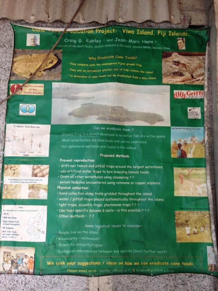 Fijian Crested Iguana Project