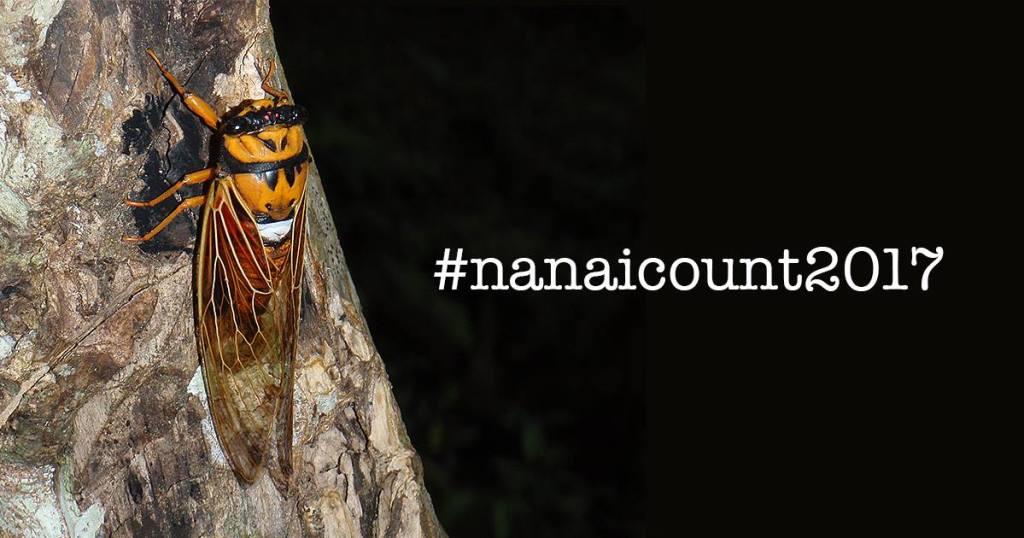 nanai count 2017