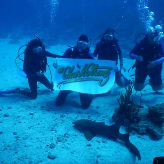 divers with shark awareness and sign under water