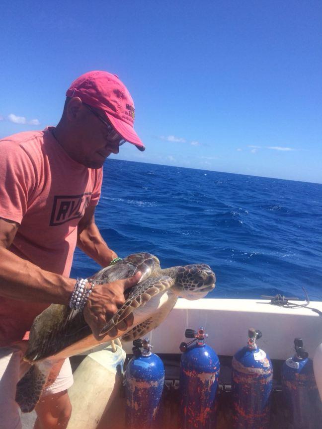 tadzio with sea turtle