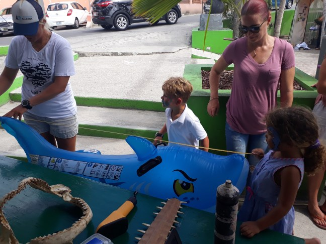 Kids measuring a shark