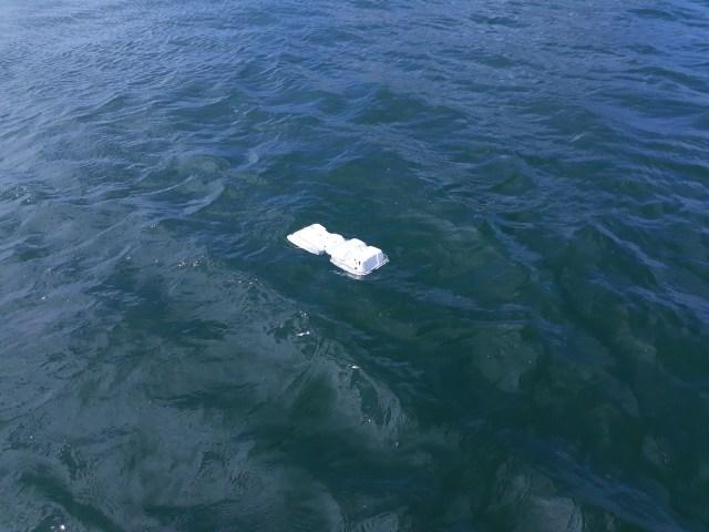 styrofoam floating in sea