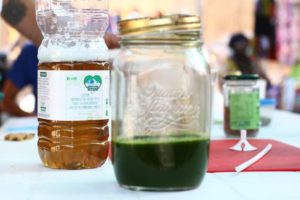 raw cannabis juicing
