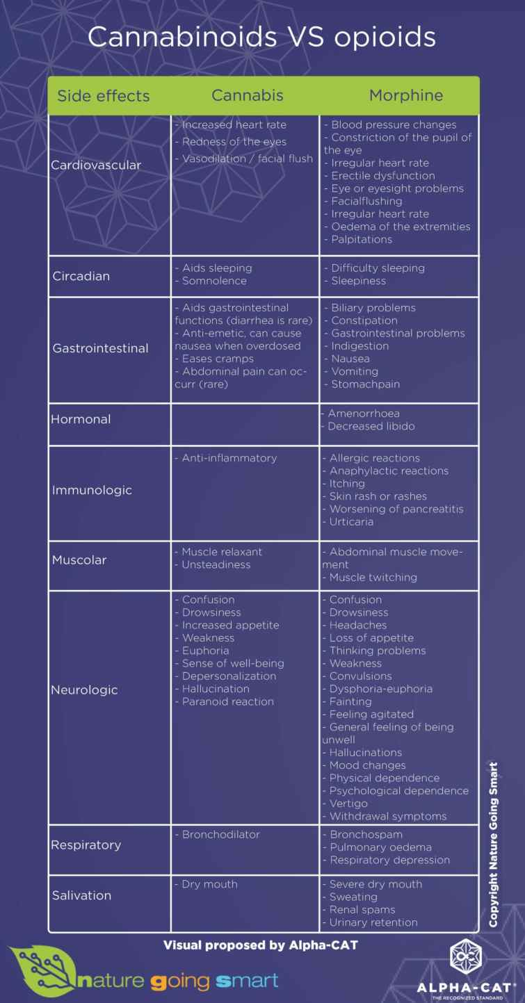 CANNABINOIDS-VS-OPIODS - comparison chart - english version - Nature Going Smart
