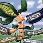 produzione biodiesel