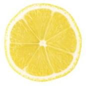 Macro food collection - Lemon slice. Isolated on white background