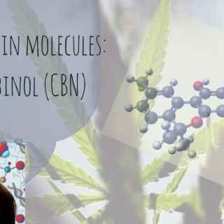 Cannabis in molecules_ Cannabinol (CBN)