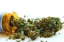 Cannabis per l'Alzheimer