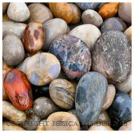 PEBBLES 1 - Pebbles on Chesil Beach. You can find posts about pebbles from many places in the PEBBLES category in Jessica's Nature Blog.