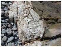 Junction of white calcite crystals with Carboniferous Limestone on the beach