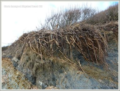 Storm damage to cliff edge at Ringstead Bay